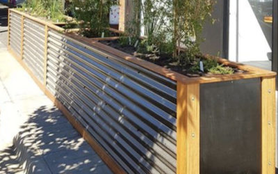 Wicking bed planters give new life to Bendigo CBD