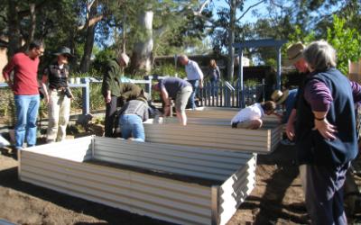 West Pymble Community Garden – part of a global trend