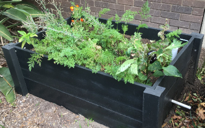 WaterUps® offers eco-friendly eWood® raised wicking beds