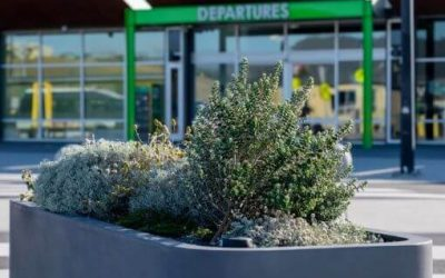 WaterUps® planters in one of Australia's driest capital cities
