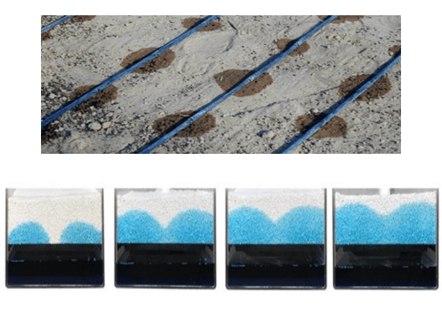 'Wick vs Drip' comparing WaterUps® to drip irrigation
